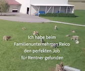 Alternative für Rentner